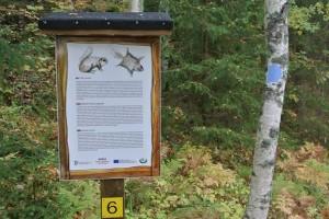 Liito-oravan taulu ja lista luontotauluista idästä länteen